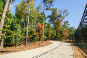 Brook Run Park Trail Dunwoody, GA 30338