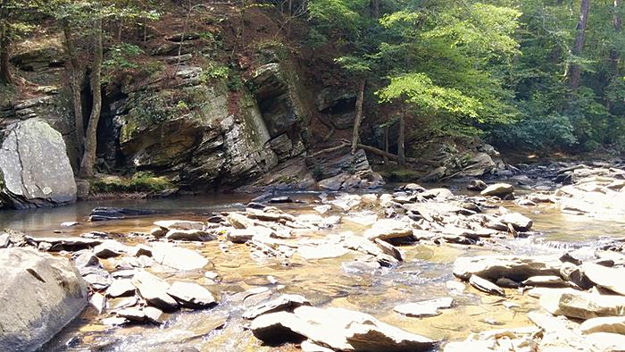 Sope Creek Hiking Trail